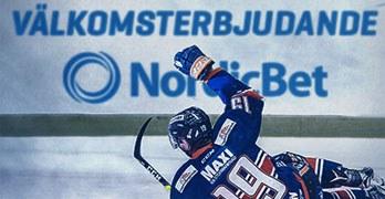 Ishockeyspelare på isen
