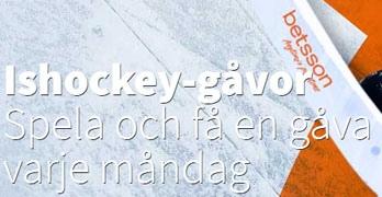kampanjbild hockeygåvor